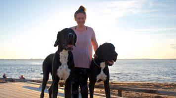 Das sind die 17 größten Hunde der Welt